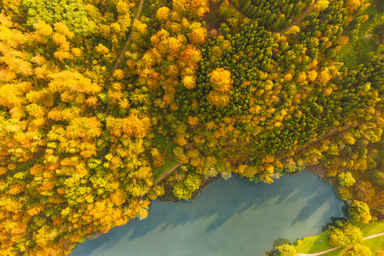 Aerial view of autumn forest in South styria Green hart of Austria