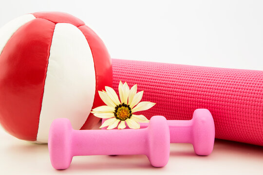 Home fitness is light weights, yoga mat, and medicine ball.  Gazania daisy flower accents pink, red, and white equipment.
