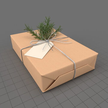 Wrapped Christmas gift 1