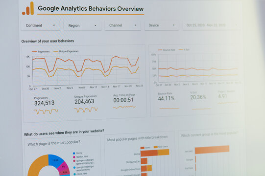 Google analytics behavior overview