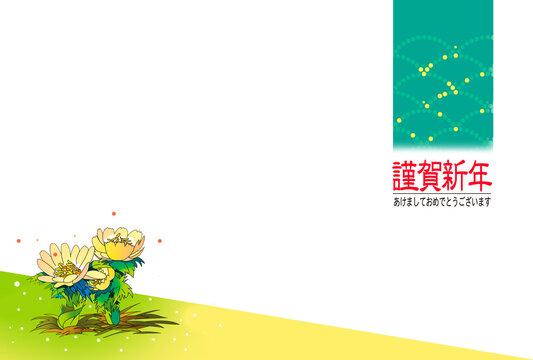 年賀テンプレート、福寿草の花