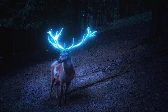 Ein Hirsch mit blau leuchtendem Geweih steht im dunklen Wald