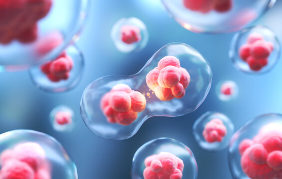 3d rendering of Human cell or Embryonic stem cell microscope background.