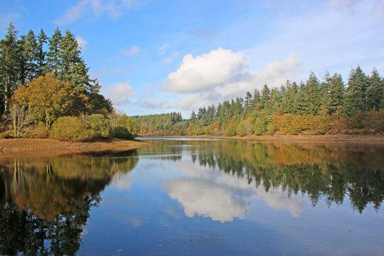 Reflections in Tottiford Reservoir, Devon, in Autumn