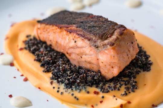 Salmon fillet with sweet potato puree, quinoa and creamy wine sauce. Fresh food close-up