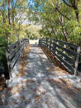 Billie's Bridge, Twin Rivers Trail, Queenstown Area, New Zealand