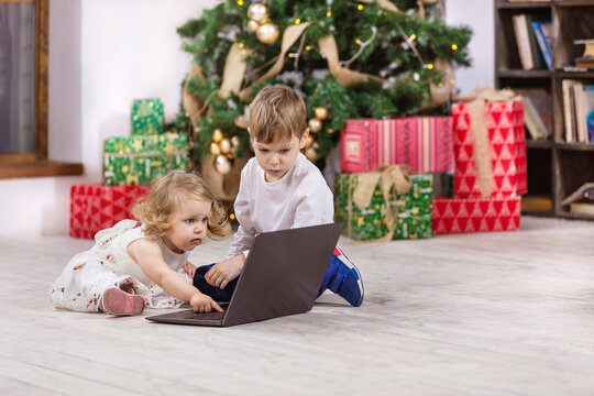 Young girl and boy watching video on laptop computer beside Christmas tree