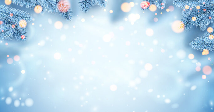 Frozen white spruce branches with bokeh lights.