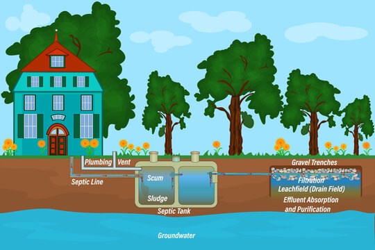 Mobile home septic system and drain field scheme. Underground septic system diagram. Typical household septic tank. External network of private home sewage treatment system. Stock vector illustration
