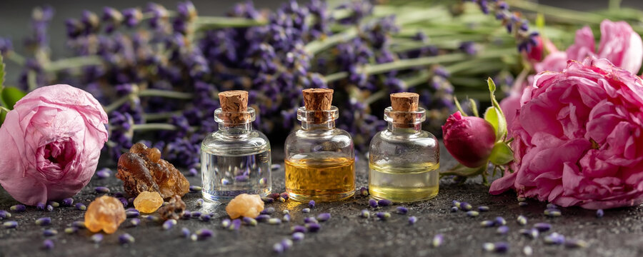Panoramic header of essential oil bottles, lavender, frankincense and roses