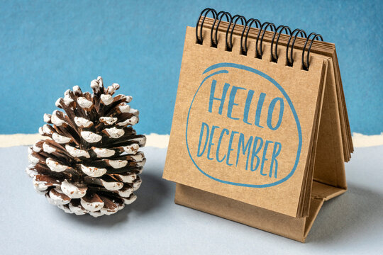 Hello December greeting card - handwriting in a sketchbook with a decorative frosty pine cone, winter calendar concept