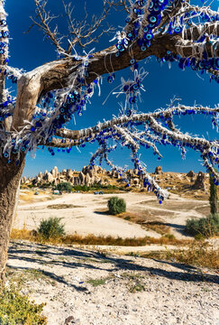 The branches of old tree decorated with evil eye amulets Nazars, Goreme, Cappadocia, Turkey.
