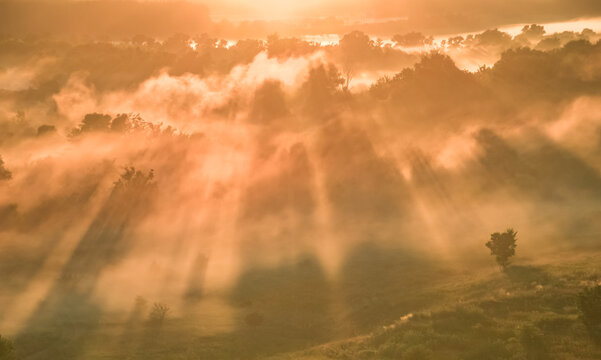 Aerial view Sunrise of meadow with forest in sunlight and mist