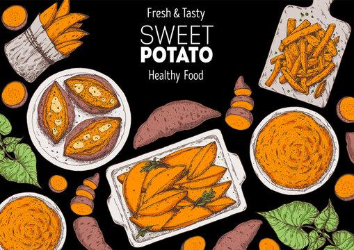 Sweet potato illustration. Batatas hand drawn vector illustration. Farm market food. Raw and cooked sweet potatoes hand drawn. Packaging design.