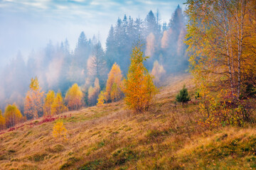 Landscape photography. Low cloud overcast in the mountain forest. Gloomy autumn view of Carpathian mountains. Splendid morning scene of mountain valley. Fotobehang