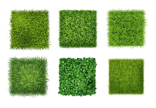Green Grass Realistic Set