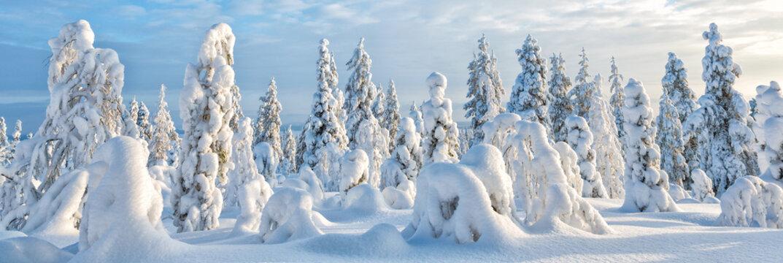 Winter scene in Lapland - background banner image