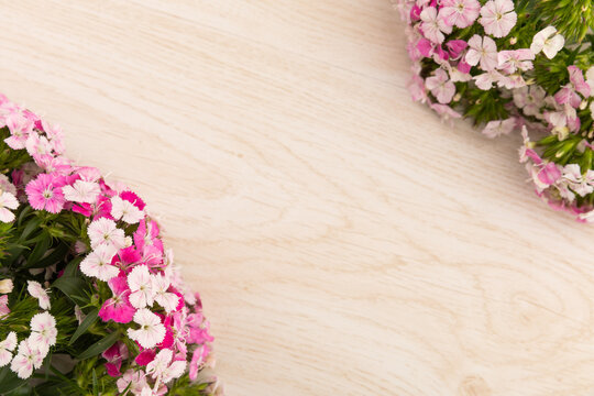 Two bunches of pink flowers in corners on wooden background