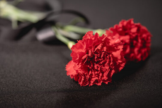two red carnation flowers with ribbon on black , funeral concept