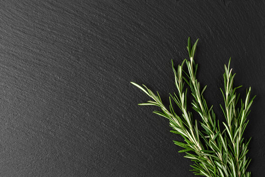 rosemary branch on black slate, top view, place for text