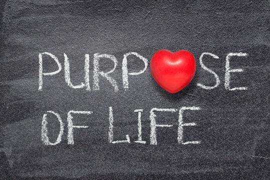 purpose of life heart