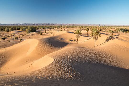 Avancée des dunes du désert marocain