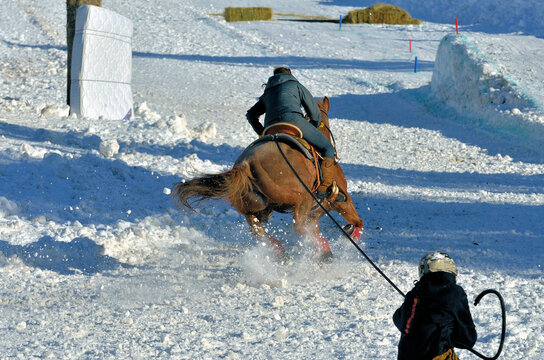 Skijoring in western USA. Skijoring is a competitive winter sport in which a person on skis is pulled by a horse, a dog or a motor vehicle. It is derived from the Norwegian word skikjøring.