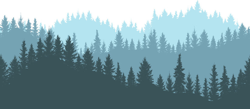 Seamless forest on mountains, silhouette. Beautiful landscape, fir trees. Vector illustration