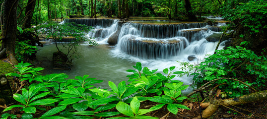 Panoramic beautiful deep forest waterfall in Thailand. Wall mural