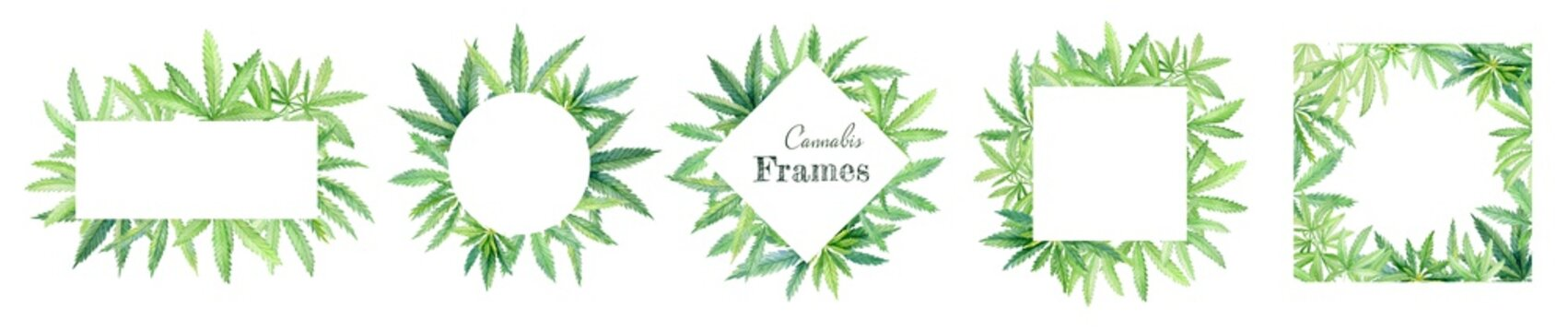 Watercolor green cannabis leaves frames. Hand drawn medical marijuana illustration isolated on white background. Round and square borders, templates for invitations and logo