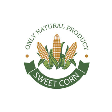 sweet corncob label isolated on white background
