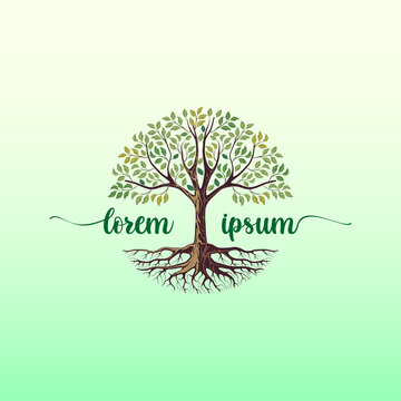 Elegant Tree logo design template, tree of life logo with a beautiful and harmonious circular shape with the addition of the company name in the center.