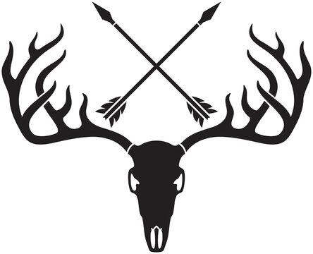 vector deer skull with horns and crossed arrows