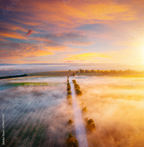 Wall mural Breathtaking view from a drone flying over the morning agricultural land.