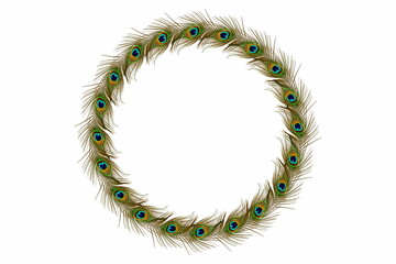 peacock feathers frame in white background with text copy space