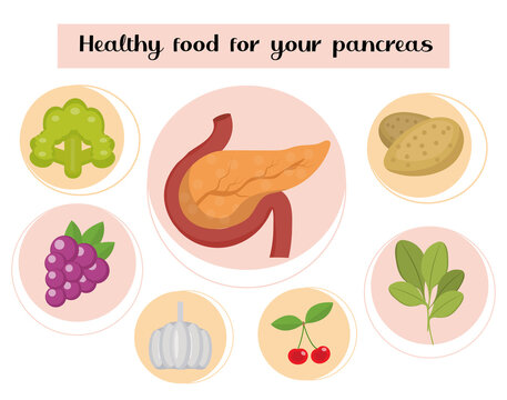 Healthy food for your pancreas. Concept of food and vitamins, medicine, prevention of pancreatic diseases. Vector illustration