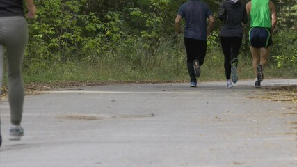 Wall Mural - group of runners men and women running race in autumn park