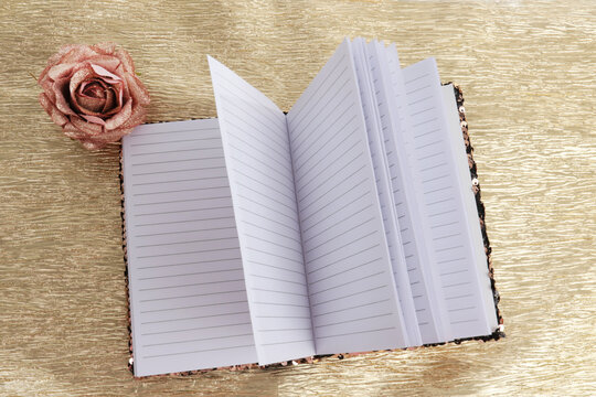Dairy book with open pages and a single rose