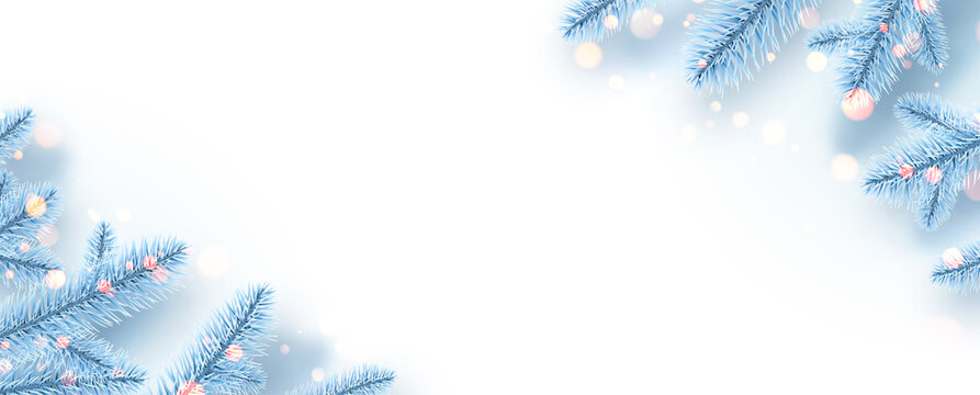 Frozen light blue spruce branches with bokeh lights.