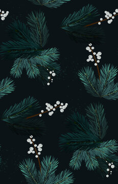 Merry christmas pine tree evergreen branches, nature freame, wreath decoration. Modern graphic, mistletoe evergreen branches Boho watercolor design, fir tree festive desing. Seamless vector pattern