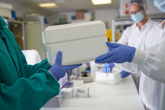 Scientists in rubber gloves passing specimen cooler in laboratory