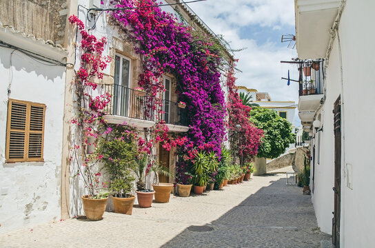 Old street with flowers on the wall in Ibiza, Spain