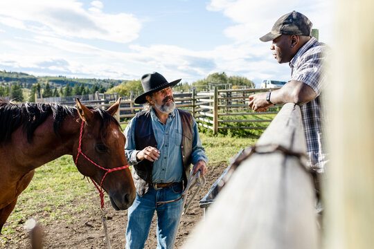 Male ranchers with horse talking in sunny rural ranch pasture