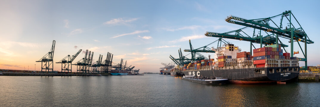 Panoramic view of MSC container vessels in Deurganck dock, the largest dock of the port of Antwerp.