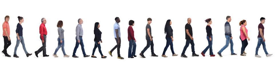 Fototapeta large group of people wearing blue jeans walking on white background