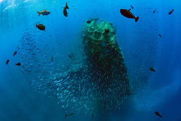 Liberty ship wreck. Underwater world of Tulamben, Bali, Indonesia.