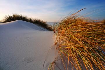 Wydmy na wybrzeżu Morza Bałtyckiego, biały piasek, plaża ,trawa, morze, błękitne niebo.