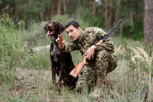 Man with Rifle and Pointer Dog Hunting for Rabbit.