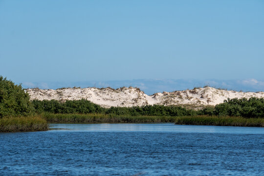 Sand dunes and wetland in Anastasia State Park Florida
