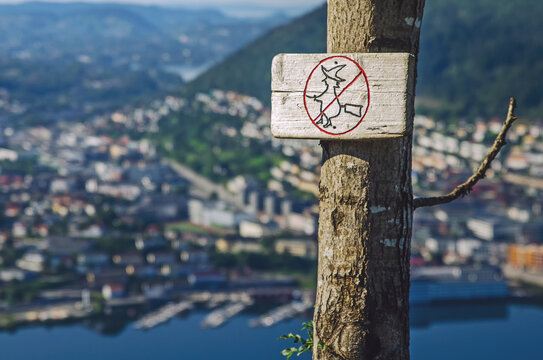Sign of the witch restriction on the tree in Norway